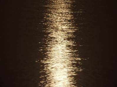 moonlight732444627_0339bb3b16