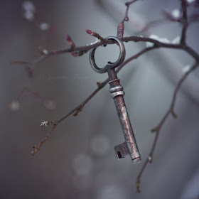 key_to_my_soul_by_petaldreams-d4oyb4d