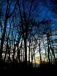 blue dawn photo rendering