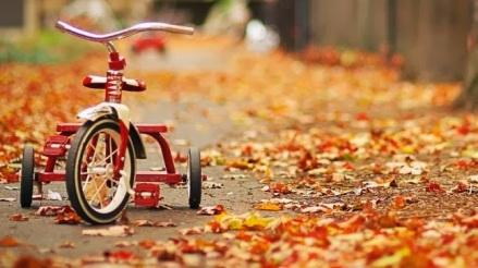 autumn imagination CD 8