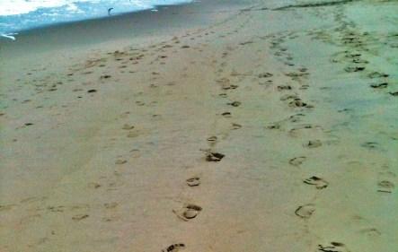 sandy path (3)