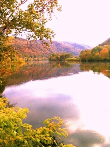 fall lake side
