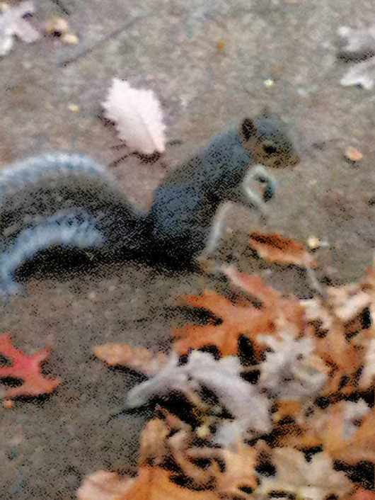 fall's creatures