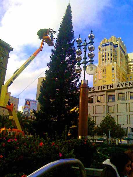 SF Christmas
