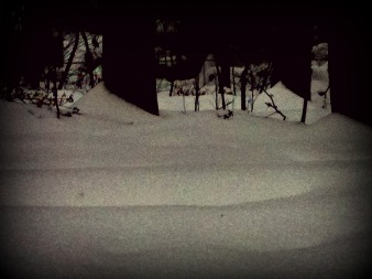 waves of snow