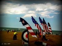 kites at the beach