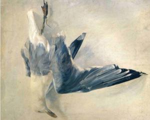 dead-gull.jpg!xlMedium