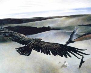 soaring.jpg!xlMedium