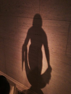 Moon light silhouette