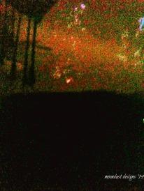nights curtain