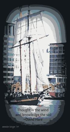 the sail