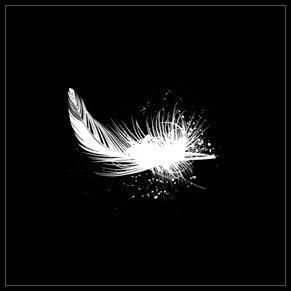 feather Kubicki