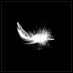 feather Kubicki