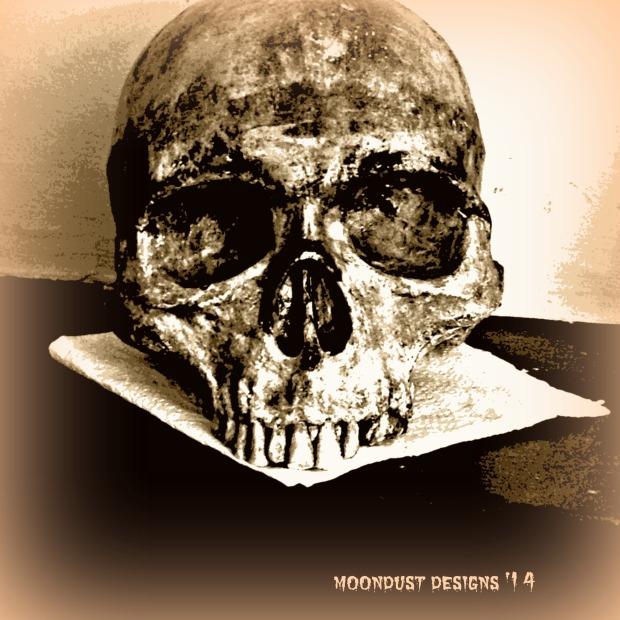Poe skull