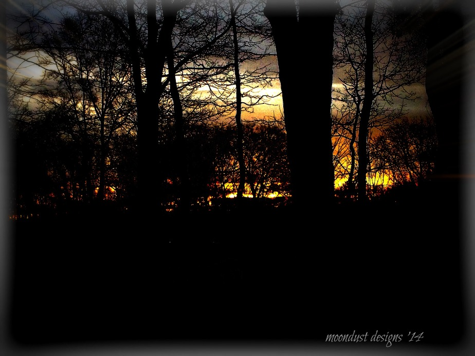 warm dawn