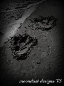 bw dragon-feet