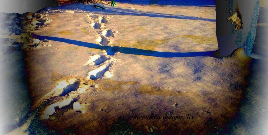 copy-footprints.jpg