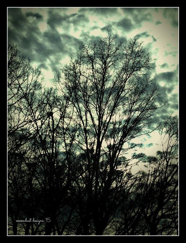 dusk clouds