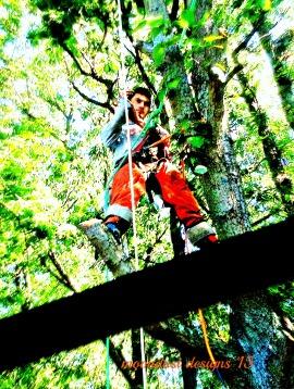 guy in trees