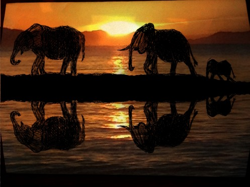elephants in the sunrise