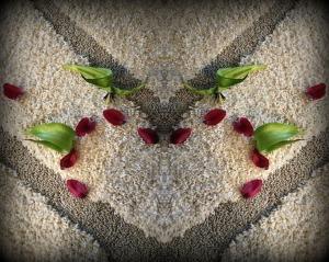 tulip-heart