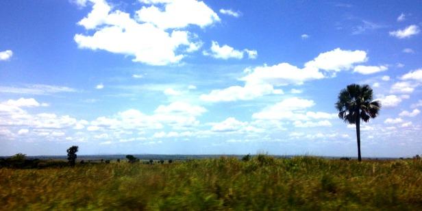 Uganda country